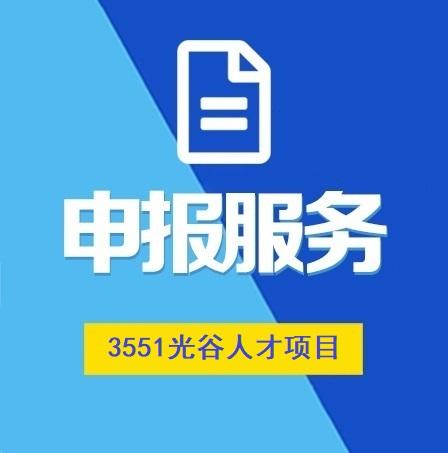 3551光谷人才计划项目
