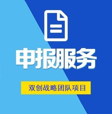 湖北省双创战略团队项目申报