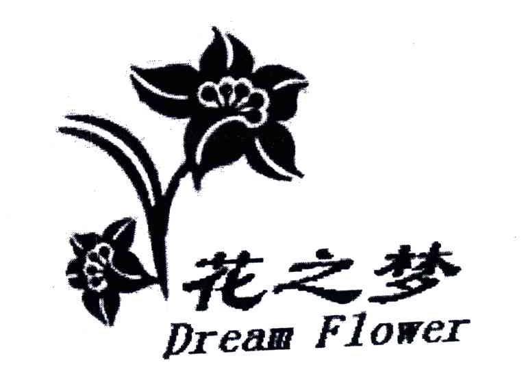 花之梦;DREAM FLOWER